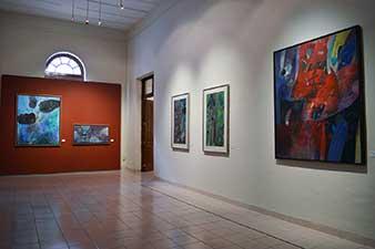 Exposición Roger von Gunten. Vista de Sala
