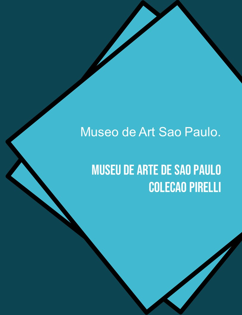 Museu de Arte de Sao Paulo Colecao Pirelli